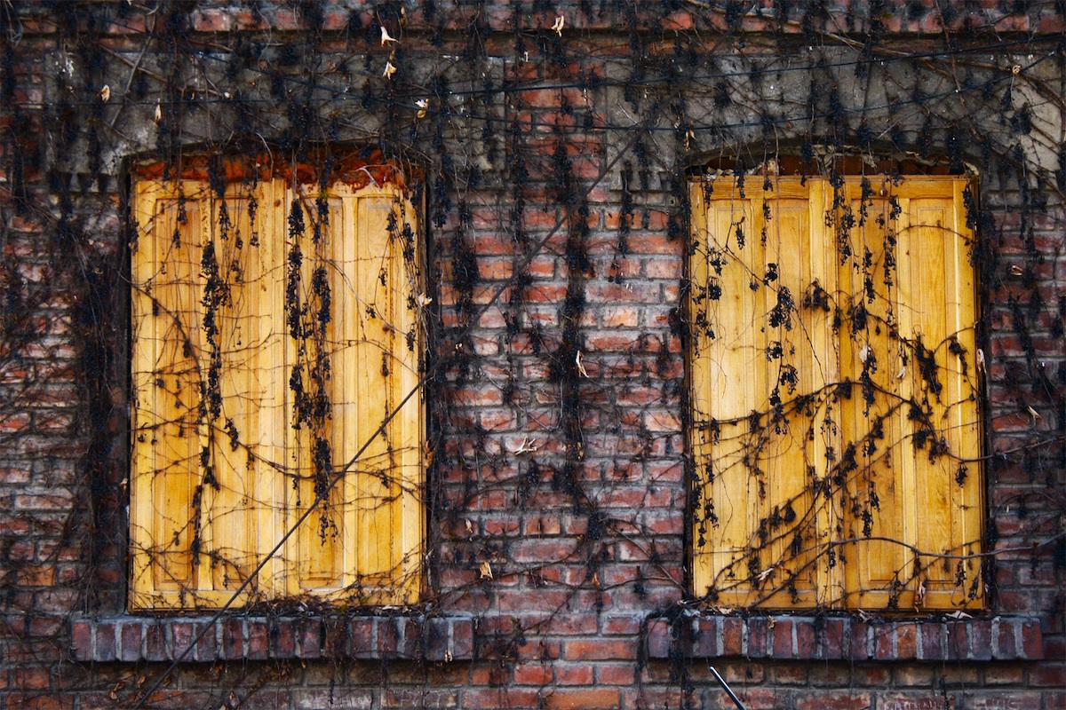 duplicate windows wooden